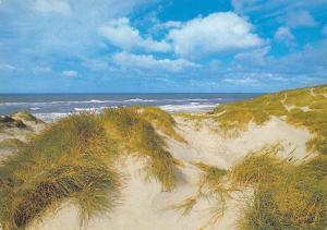 Denmark Klitlandskab Sea Waves Beach Landscape Plage