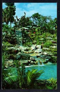 Waterfall,Cypress Gardens,FL BIN