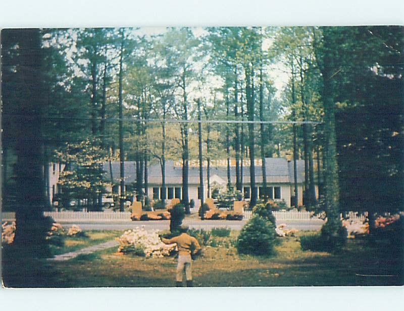 Pre-1980 MOTEL SCENE Accomac - Near Cape Charles & Norfolk Virginia VA G7557