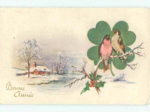foreign Old Postcard BIRDS ON BRANCH WITH FOUR LEAF CLOVER SHAMROCK AC3454