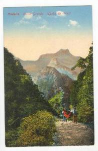 Madeira, Portugal,Curral Grande (Rocha da cara), 00-10s