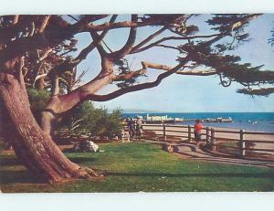 Pre-1980 PARK SCENE Santa Monica California CA hk6764