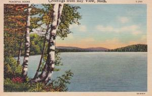 Michigan Greetings From Bay View 1944 Curteich