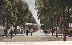 California Tent City Avalon Santa Catalina Island