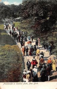 US N.Y. New York City Promenade in Central Park, Elegant Fashion 1907
