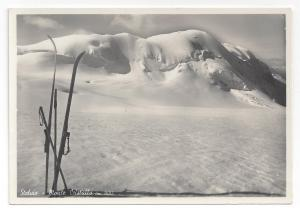 RPPC Italy Stelvio Monte Cristallo Skis Alps Real Photo