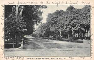 Le Roy New York East Main and Trigon Park Antique Postcard J56023