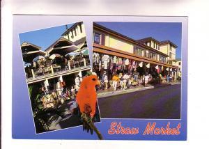 Twoview, Straw Markets, Red Parrot, Bahamas, Photo Charm Kraft