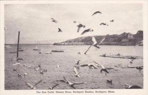 Massachusetts Rockport Sea Gulls Dinner Hour Albertype