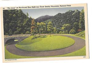TN Newfound Gap Highway Great Smoky Mountains Natl Park The Loop Postcard