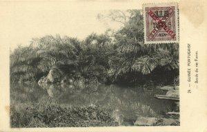 PC CPA PORTUGUESE GUINEA, BORDS DU RIO FARIM, VINTAGE POSTCARD (b13351)