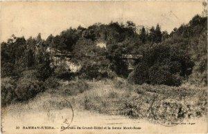 CPA Geiser 50 Hammam-R'Hira Environs du Grand Hotel ALGERIE (755290)