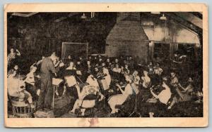Carrollton-Leesville Lake OH~Fine Arts Philharmonic Camp~Violins~Now FFA~1952