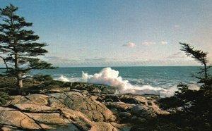 The Restless Sea Against Rugged Coast of Maine, ME, Vintage Postcard g8262