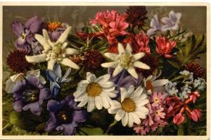 Flowers -  Alpine Assortment                             (Thor & Gyger #1318)