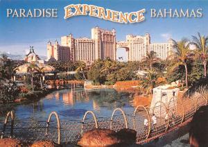 Paradise Expierence - Bahamas