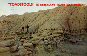 NE - Lincoln. Toadstool Park View
