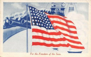 WWI Patriotic~Flag Waves For the Freedom of the Seas~Ship Deck~Guns~1917 PC