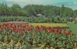 CALGARY , Alberta , Canada , 1966 ; Zoo