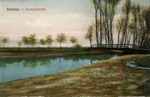hungary, SZENTES, Kurcarészlet, Panorama (1910s)