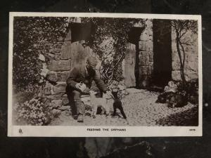 Mint England Real Picture Postcard Feeding The Orphans Lambs
