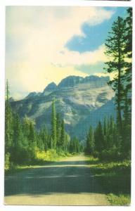 Glacier National Park Montana Rockies Garden Wall