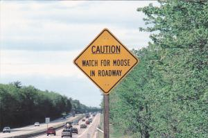 Moose Crossing New England Post Cahd