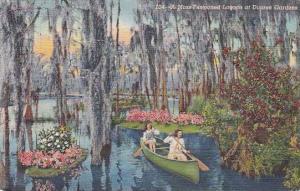 Florida Dupree Gardens A Moss Pestooned Lagoon At Dupree Gardens