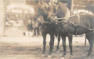 F42/ Occupational RPPC Postcard c1910 Hardware Store Horse Team 24