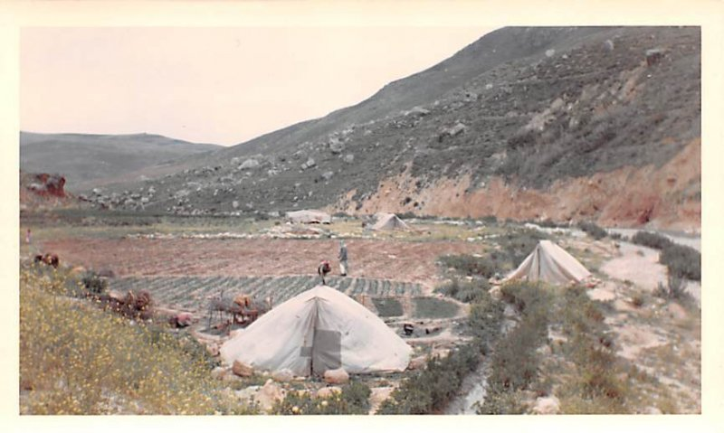 At River Nahr-az-Zarga Ar Rumman Jordan Non Postcard Backing