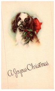 Dog ,   Christmas Greetings