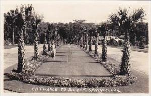 Florida Silver Springs Entrance Real Photo RPPC