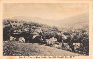 Pine Hill New York Birdseye View Of City Antique Postcard K72085