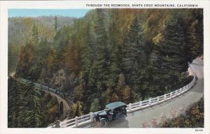 Through The Redwoods Santa Cruz Mountains California
