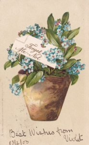 Potted Forget-Me-Nots, PU-1903 TUCK #889