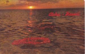 Hawaii Aloha Flower Leis Floating In Rays Of Setting Sun