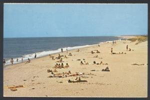 Vineyard Haven South Shore Katama Beach Edgartown MASS MA Postcard