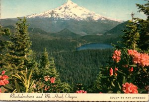 Oregon Rhododendrons and Mount Hood & Lost Lake