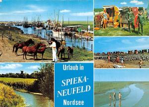 Urlaub in Spieka Neufeld Nordsee, Hafen Pferde Horses Harbour Beach Mud
