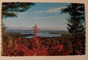 Vintage Postcard Paulus Bay Lake Winnipesaukee New Hampshire 1978   685