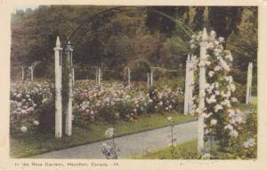 In the Rose Gardens - Hamilton, Ontario, Canada - pm 1985