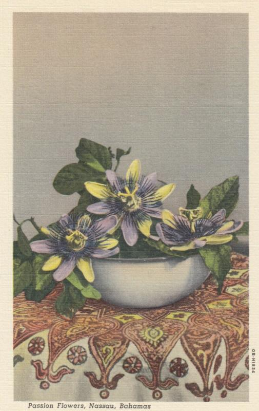 NASSAU , Bahamas , 30-40s ; Passion Flowers in a bowl on a table