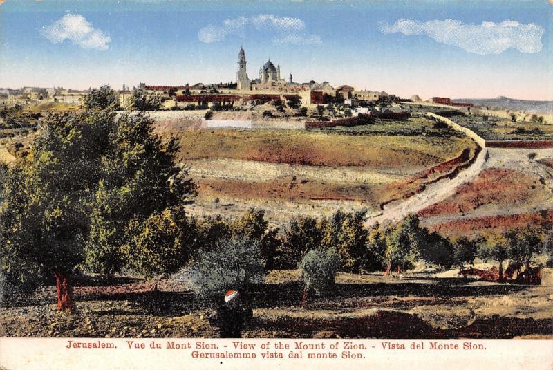 Jerusalem Israel~View of Mount Zion~Temple Mount~Walls~Skyline Panorama~1908