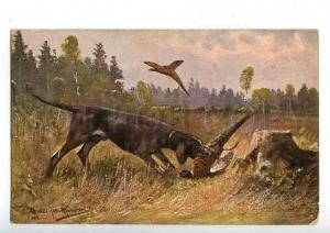 183023 Pheasant hunting with dog by MULLER Vintage postcard