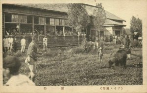 japan, HOKKAIDO, Native Ainu Aynu Aino, Iomante Bear Ceremony (1910s) Postcard