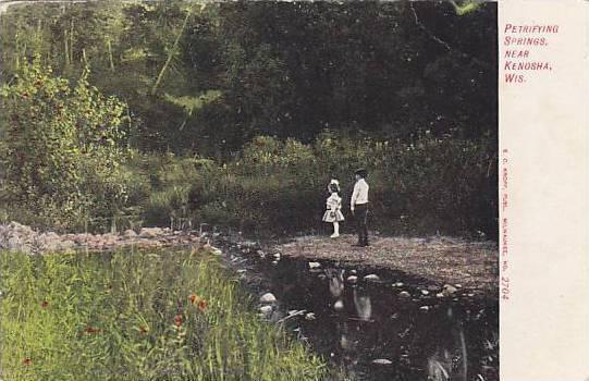 Petrifying springs, near Kenosha, Wisconsin,00-10s