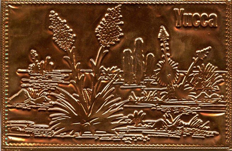 Kopper Kard - Yucca