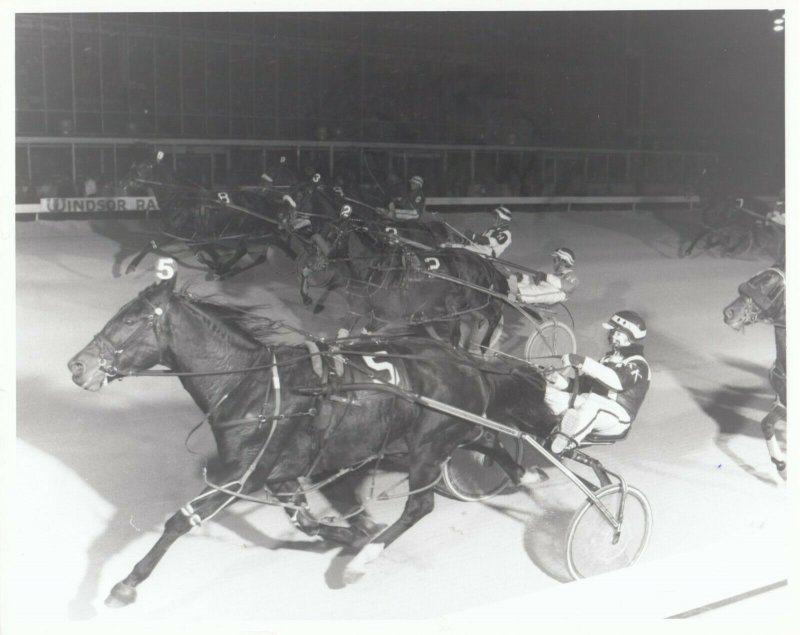 WINDSOR RACEWAY, Harness Horse Racing, K M MELSIE wins