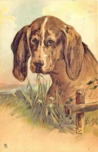 Raphael Tuck Dog with Fence Art Embossed Postcard