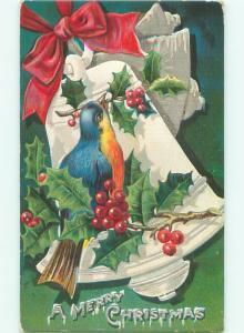 Divided-Back BIRDS SCENE Pretty Postcard AA9101